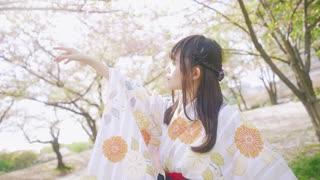 【きりり】夢と葉桜【踊ってみた】