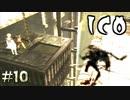 熱い睨み合いを繰り広げる【ICO】#10