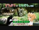 第16位:【動物紹介型Vtuber】どうぶつのともだち~東山動植物園part2~偽装は愛「オオアリクイ」/ 睡眠・食事は命がけ「コアラ」【名無しのアデリー】
