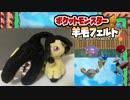【実況】『羊毛フェルト』で自作したポケモンしか使えない縛り(Part⑨後編)
