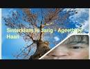 Sinterklaas Is Jarig - Ageeth De Haan
