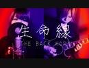 【オリジナルアレンジで】 生命線 / THE BACK HORN 【 演奏してみた 歌ってみた 】 ネガトポジィー (Original Cover)