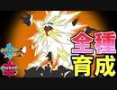 【ポケモン剣盾実況】続全種育成その24【ソルガレオ】