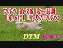 ワルツ 第6番 変ニ長調 Op.64-1「小犬のワルツ」/ F.F.CHOPIN [DTM]