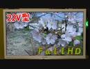 【22V型液晶テレビ】FullHDの動画【シャープ】
