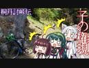 桐丹討峠伝 子の権現