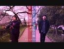 【違和感仕事しろ】「桜」ソング6曲混ぜてアレンジメドレー
