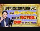 #1005 「日本の歴史歪曲を謝罪しろ」とテレ朝「モーニングショー」。韓流ドラマ「愛の不時着」で北を語る元AERA編集長|みやわきチャンネル(仮)#1155Restart1005