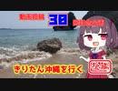 【秋田弁きりたん車載】投稿30回記念動画 きりたん沖縄を行く「後編」