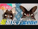 [サイエンスZERO] ヘンな生き物!進化の秘密「超遺伝子」研究   スーパージーン   NHK