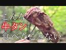 ココキャン 第74話『牛タン丸焼き!豪華キャンプ!!』