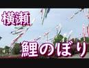 横瀬鯉のぼり~SLパレオエクスプレス~