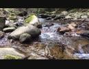 【自然音】せせらぎ 水の音でリラックス!
