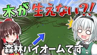 【Minecraft】木が生えない世界で100日間サバイバル!#1【ゆっくり実況】【100days】