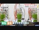 ミドリムシ・・・地球の未来のカギ握るスーパー微生物