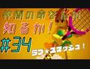【実況プレイ】仲間の命なんか知るか!デジボク地球防衛軍#34【ま~るい地球が四角くなった!?デジボク地球防衛軍】