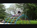 【公園】太鼓橋のような遊具⁉(ジャングルジム)で遊ぶあい❤結構怖いwww