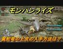 モンハンライズ 翼蛇竜の上皮の入手方法は? #427【MHR】