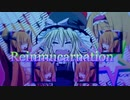 第65位:Reinmucarnation☆