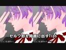 第340位:【MMD講座】セルフ影(セルフシャドウ)を綺麗に出すTips