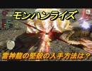 モンハンライズ 雷神龍の堅殻の入手方法は? #537【MHR】