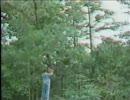 ハプニング動画集3