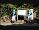 【1分弱登山祭2021】倉ヶ岳登山でアルゴリズムたいそう【ピタゴラスイッチ】