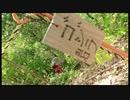 【リアル登山アタック】百々ヶ峰三田洞ルート 58:53