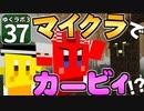 【Minecraft】ゆくラボ3~魔法世界でリケジョ無双~ Part.37【ゆっくり実況】