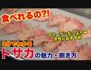 【食べれるの?!】鶏のトサカの捌き方