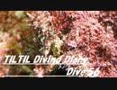 TILTIL diving diary:Dive56