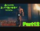 【実況】森とマイクラを足してXで割った世界でサバイバル【VALHEIM】part12