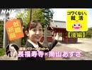 [就活応援] 南山あずささんが就活生に人気の「幸せのゾウ」で就職祈願! | コワくない。就活 | NHK