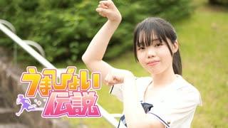 【青乃カレー】うまぴょい伝説 踊ってみた【ウマ娘】