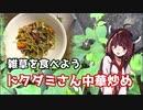 【思い切って野草を食べてみよう】#18 ドクダミさんで「四川風中華炒め」!