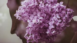 想い人 /  feat.IA