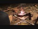 【野営動画】DAISOとセリアの商品を組み合わせて焚き火してキャンプするやつ【前編】