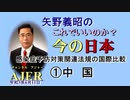 「感染症予防対策関連法規の国際比較①中国」矢野義昭 AJER2021.6.11(3)