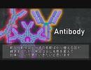 【ゆっくり解説】抗体