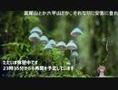 1分弱登山祭2021登山祭 振り返り生放送(2/3)