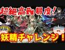激戦!超絶難易度の妖精チャレンジへの挑戦!【パズドラ】