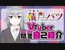 【自己紹介】Vtuber一問一答自己紹介【積戸バツ/新人Vtuber】