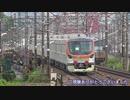 【8両】東京メトロ17000系17802編成甲種輸送(20210625)【編成】