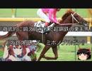 【競馬】ゆっくりさんと未来に語り継ぎたい名馬たち その030【ゆっくり朗読】
