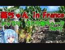 【VOICEROID車載】葵ちゃん in France : ブドウ畑ウォーク Part1