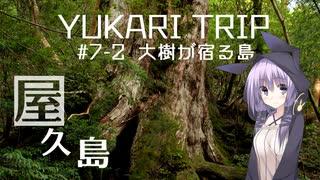 YUKARITRIP #7-2 【大樹が宿る島】