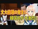 【ニコニコ動画】【韓国の反応】自ら会わないと言っておいて、いつでも会える?文大統領がおかしな事を言い始めたと韓国さんが大騒ぎ【世界の〇〇にゅーす】を解析してみた