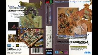 1991年03月29日 ゲーム シャイニング&ザ・ダクネス(メガドライブ) 「05-The Ancient Temple」