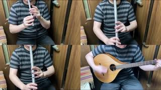 原神のメインテーマ曲をアイリッシュ楽器