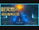 【実況】ゼルダシリーズ初見の女子がプレイしてみた~新天地へ!祠と森林の塔~【Part17】